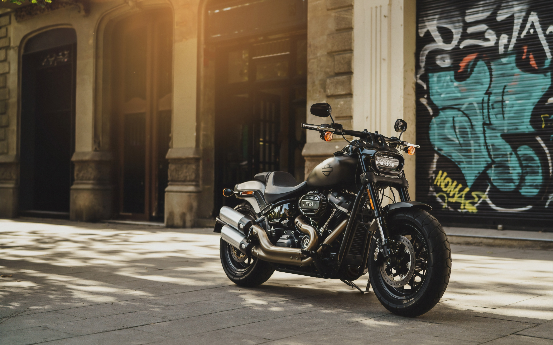 Harley Davidson Fat Bob 4k Wallpaper Grey Motorcycle Sun Light Day Time 5k 8k Bikes 2392