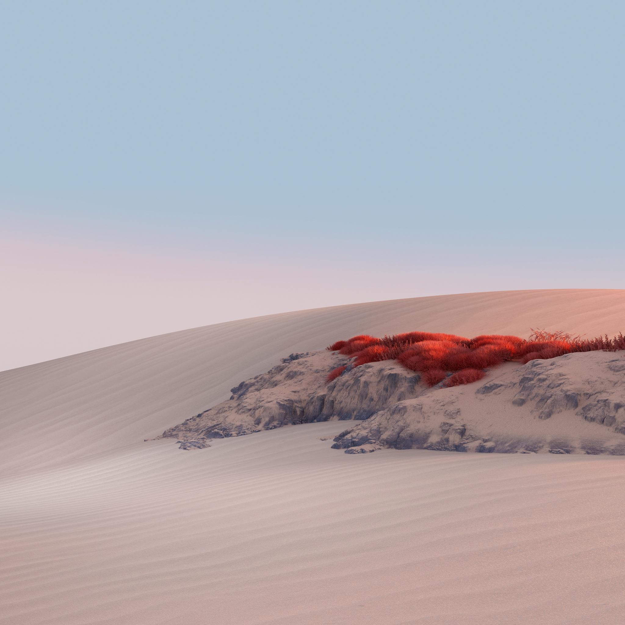 Landscape 4K Wallpaper, Desert, Sand Dunes, Clear Sky