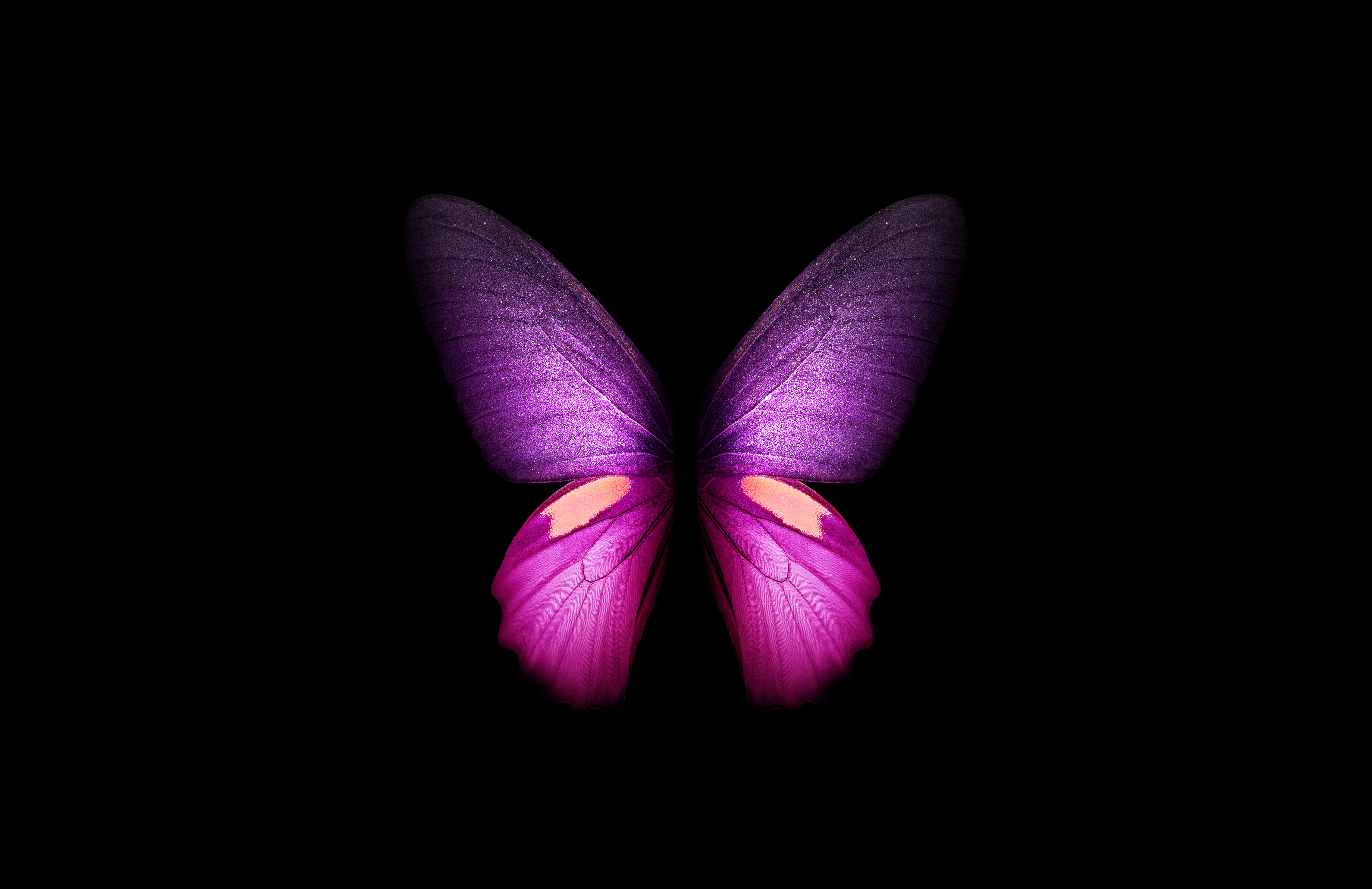 Purple Butterfly 4k Wallpaper Wings Black Background Samsung Galaxy Fold Amoled Cgi Girly Stock Graphics Cgi 2361