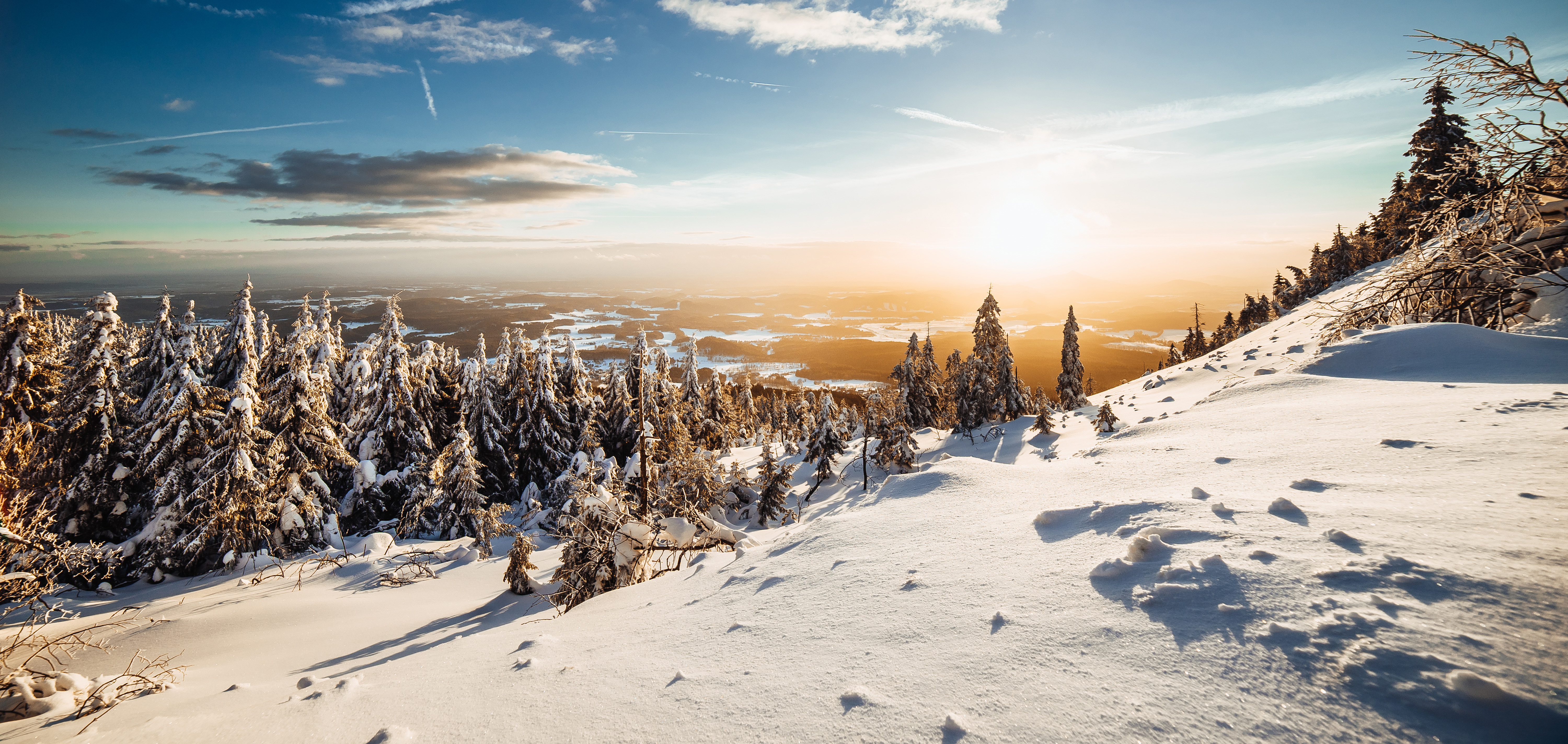Winter 4k Wallpaper Landscape Pine Trees Frosted Trees Sunny Day Snow 5k Nature 1338
