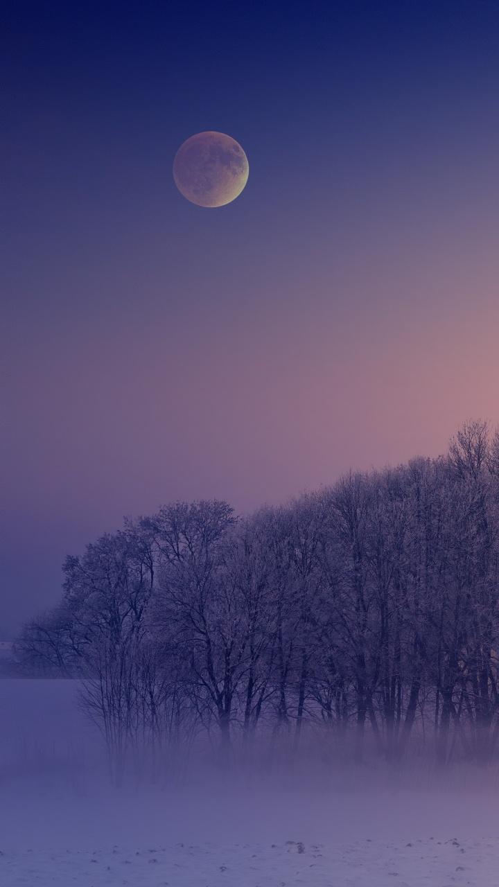 4k Wallpaper Winter Morning Foggy Moon Landscape Cold