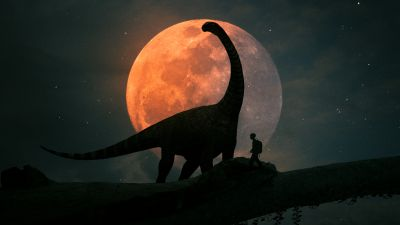 Dinosaur, Kid, Night, Travel, Discover, Moon, Silhouette