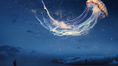 Jellyfish, Dream, Surreal, Night sky, Alone