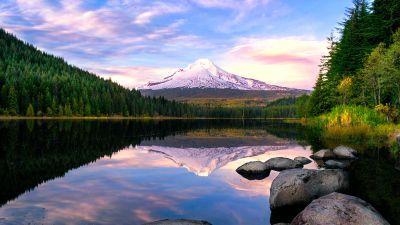 Trillium Lake, Mount Hood, Pine trees, Forest, Reflection, Oregon, USA