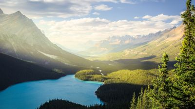 Banff National Park, Peyto Lake, Canadian Rockies, Mountains, Forest, Daylight, Sunny day, Summer, Canada