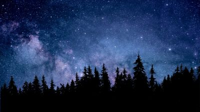 Night, Starry sky, Forest, Silhouette, Astronomy, Cosmos, 5K