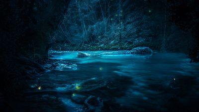 Forest, River, Night, Dark, Magical, Crescent Moon, Blue, Fairies