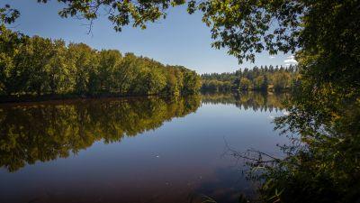 Androscoggin River, Trees, Reflection, Pleasant, Sunny day, 5K