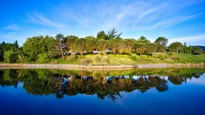 Green Trees, Blue Sky, Golf course, Pond, Water, Reflection, Green, Landscape, 5K, 8K