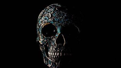 Skull, Human, Skeleton, Black background, Art, 5K