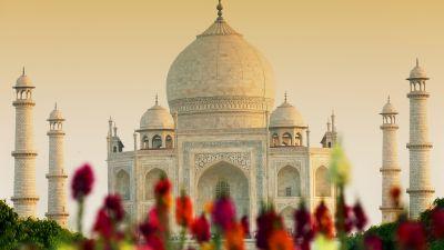 Taj Mahal, Agra, India, UNESCO World Heritage Site, Wonders of the World, 5K