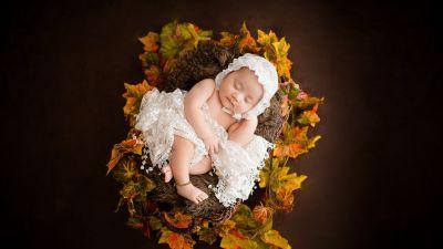 Newborn, White Dress, Fur, Autumn leaves, Brown, Dark background, Cute Baby, Basket, 5K