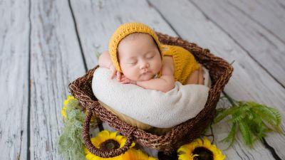 Newborn, Crochet baby costume, Yellow dress, Sleeping baby, Basket, Sunflowers, Wooden Floor, Cute Baby, Green leaves, 5K