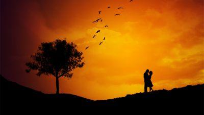 Couple, Silhouette, Orange sky, Tree, Birds, Sunset, Romantic, Landscape
