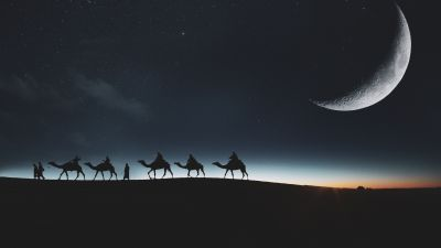 Camels, Silhouette, Moon, Dark background, Night sky, Stars, 5K, 8K