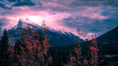 Mount Rundle, Canada, Golden hour, Clouds, Purple sky, Trees, Sunset, Mountain Peak, 5K