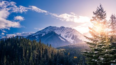 Snow mountains, Pine trees, Clear sky, Clouds, Sunset, Mountain range, 5K