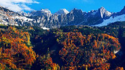 Autumn trees, Snow mountains, Blue Sky, Glacier, Landscape, Mountain range, Scenery, 5K
