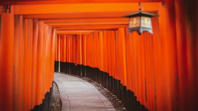 Shinto Shrine, Tokyo, Japan, Torii Pass, Orange, Pattern, Pathway, Temple, Worship, 5K