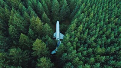 Airplane, Green Trees, Aerial view, Forest, Green background, Alpine trees