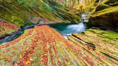 River, Autumn, Foliage, Stream, Savoie, France, Rocks, 5K