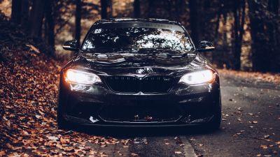 BMW, Black cars, Cinematic, Autumn, Foliage, Road, Tarmac