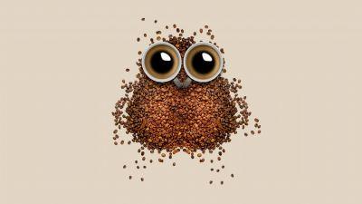 Coffee beans, Owl, Coffee cup, Brown, Drinks, Caffeine, Beautiful, 5K, 8K