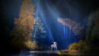 Unicorn, Fairy tale, Mythical, Light beam, Forest, Woods, Tall Trees, Scenery, Water
