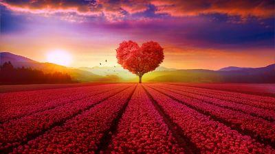 Heart tree, Flower garden, Red flowers, Landscape, Scenery, Beautiful, Birds, Sunrise, Clouds, Mountains, Aesthetic