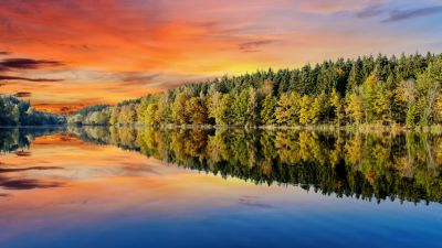 Forest, Trees, Sunset, Orange sky, Mirror Lake, Body of Water, Reflection, Landscape, Scenery, Afterglow, 5K