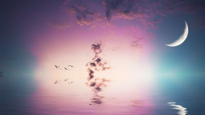 Crescent Moon, Flying birds, Body of Water, Reflection, Clouds, Sea, 5K, 8K