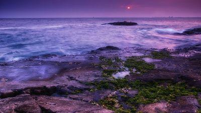Seascape, Coast, Sunset, Ocean, Evening sky, Purple, Moss, Landscape