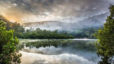 Berowra Creek, Australia, Cloudy Sky, Sunrise, Watercourse, Green Trees, Forest, Misty, Reflection, Landscape, Mirror Lake, 5K
