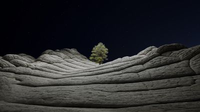 macOS Big Sur, Stock, Night, Lone tree, Sedimentary rocks, Starry sky, Dark, iOS 14, 5K