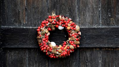 Christmas decoration, Garland, Fruits, Wooden background, Happy holidays, Pine cones, 5K