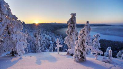 Konttainen fell, Finland, Hill, Winter, Snowy Trees, Snow covered, Sunrise, Horizon, Landscape