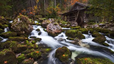 Gollinger Mill, Austria, Waterfalls, Rocks, Long exposure, Green Moss, Forest, Tall Trees, Woods, Landscape, Scenery, Flowing Water