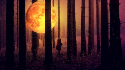 Full moon, Kid, Forest, Woodland, Surreal, Mystic, Night time, Tall Trees, 5K