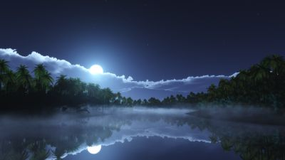 Moon light, Night time, Palm trees, Body of Water, Reflection, Stars, Clouds