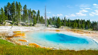 Mudpot, Yellowstone National Park, Tourist attraction, Green Trees, Landscape, Blue Sky