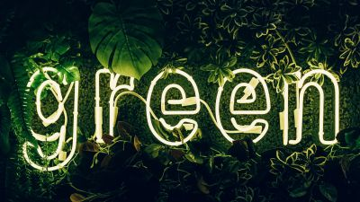 Green, Neon sign, Plant, Illuminated, Leaves