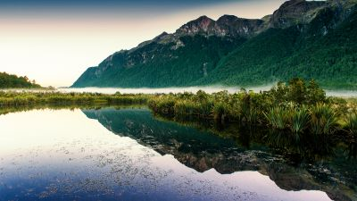 Mirror Lakes, New Zealand, Fog, Mountain, Reflection, Landscape, Scenery, Greenery