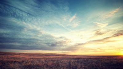 Meadow, Landscape, Horizon, Fields, Sunset, Landscape, Cloudy Sky