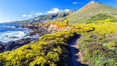 Big Sur, California, Pacific Coast Highway, Rocky coast, Plateau, Blue Sky, Clear sky, Landscape, Ocean Waves, Seascape, Pathway