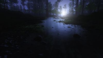 Dark Forest, Water Stream, Trees, Landscape, Woods, Night time