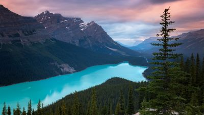 Peyto Lake, Mountains, Turquoise, Evening, Sunset, Canada