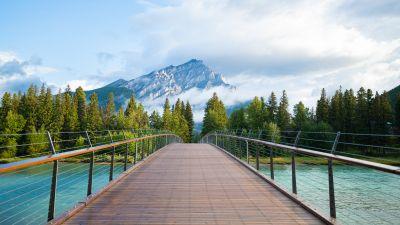 Wooden bridge, Banff National Park, Green Trees, Mountain Peak, Cloudy Sky, Landscape, Scenery, River, Rocky Mountains, 5K, 8K