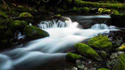 Bear Creek, Colorado, River Stream, Green Moss, Rocks, Water flow, Long exposure, Landscape, Greenery
