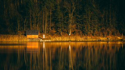 River, Forest, Wooden House, Reflection, Tall Trees, Landscape, Vacation, 5K