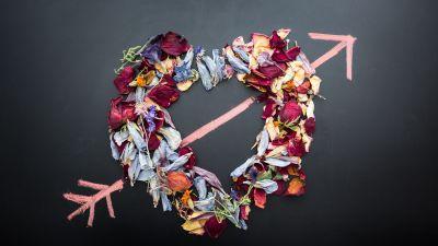 Love heart, Dark background, Flowers, Petals, Arrow, Chalkboard, 5K